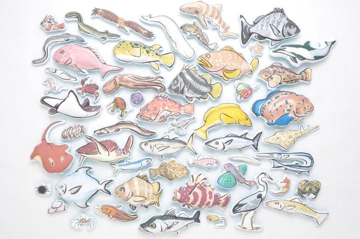おかやまの海の生きものたち