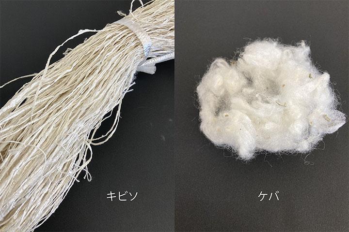家蚕副産物キビソ・ケバによる材料開発と生活用品への応用